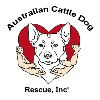 Australian Cattle Dog Rescue Inc.